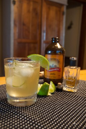 Mischief Whiskey Ginger w/ Lime https://wraysofsunshine.com/2014/06/27/drink-menu-mischief-whiskey-ginger/