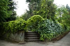 Garden, Kennedy School