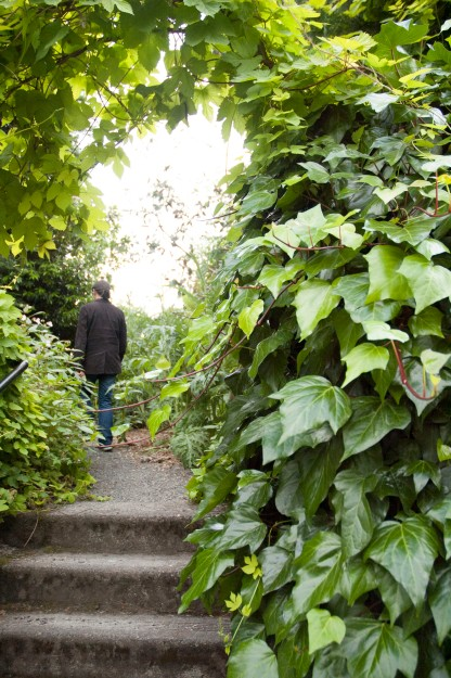Matt in Garden