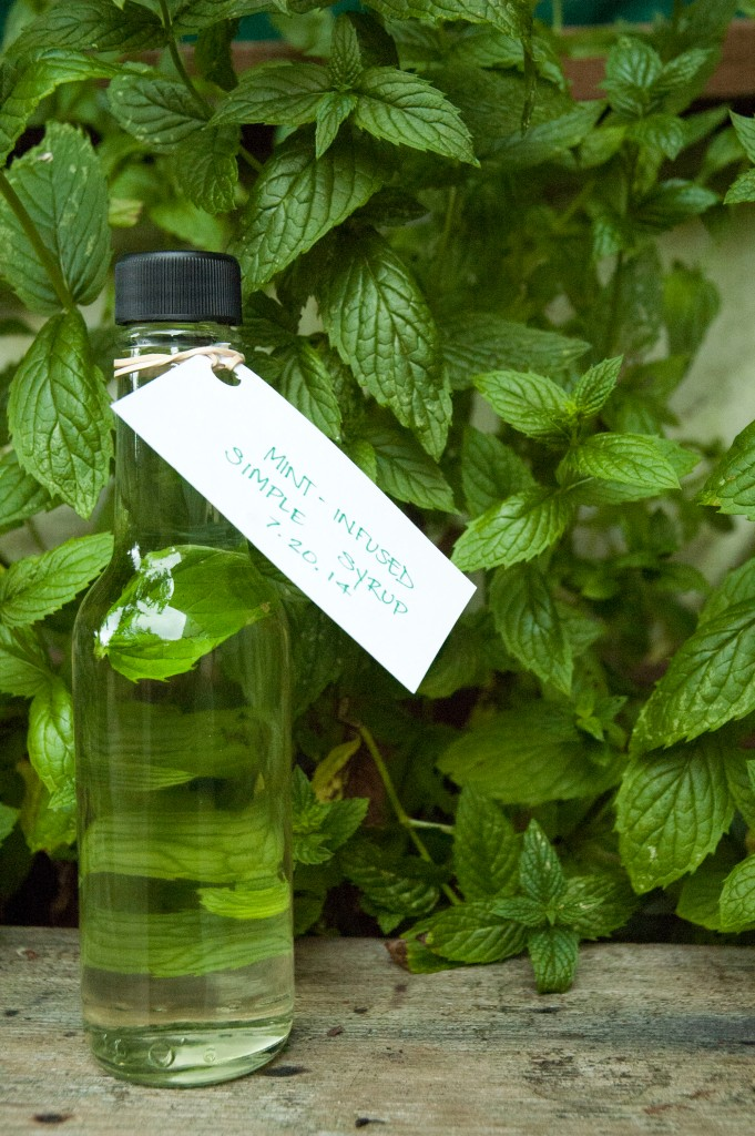 Mint Infused Simple Syrup