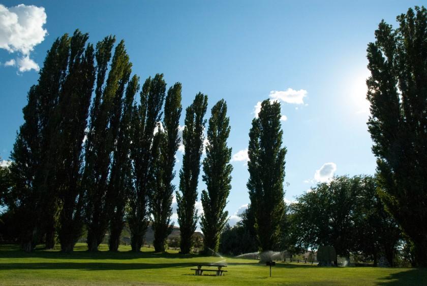 Park at Lyons Ferry
