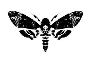 Metamorphosis2