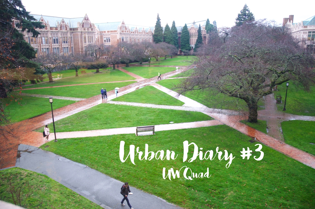 Urban Diary #3 | UW Quad | U District